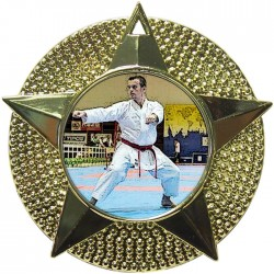 Gold Karate Medal 48mm