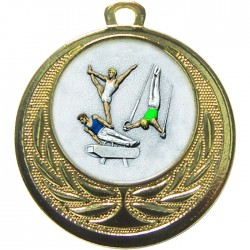 Gold Male Gymnastics Medal 40mm