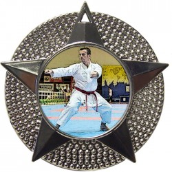 Silver Karate Medal 48mm