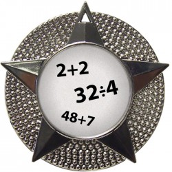 Silver Maths Medal 48mm