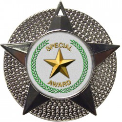 Silver Special Star Medal 48mm