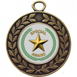 Bronze Special Star Medal 45mm
