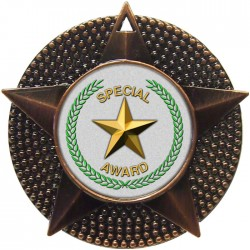 Bronze Special Star Medal 48mm