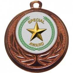 Bronze Special Star Medal 40mm