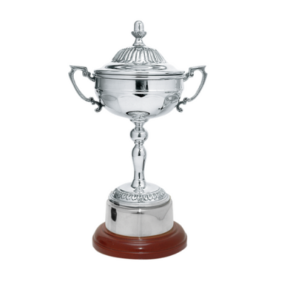 Silver Plated Presentation Cup on a Mahogany Base 29cm
