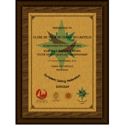 Gold Digital Plaque XL