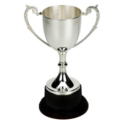 Silver Plated Cup with a Black Base 34cm