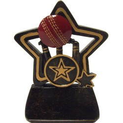 Little Star Cricket Trophy
