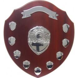 Annual Shield 35cm