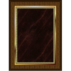 Marble Mist Coated Plaque Red Large